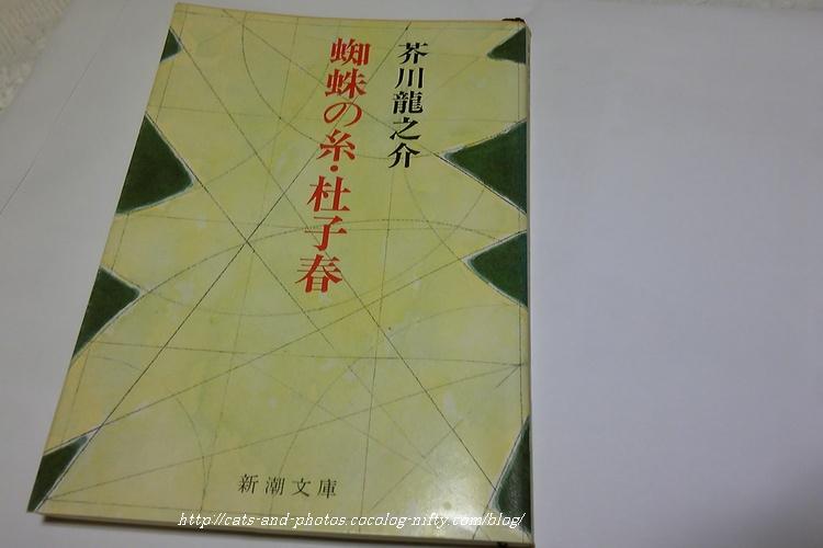 Sh3b0047_2
